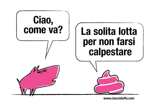 caccalpesta